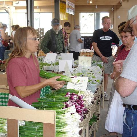 SPIN photo farm stand Gail