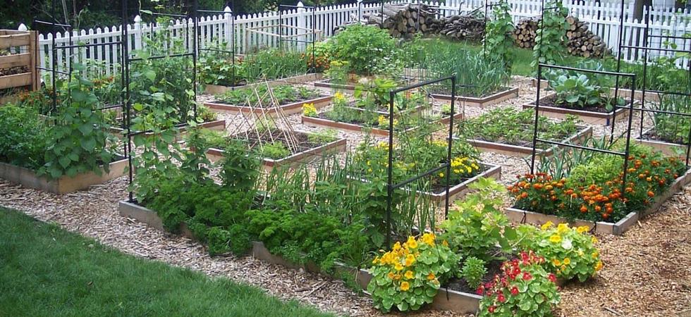 Square foot gardening.